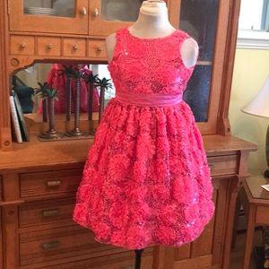 American Princess Pink Rosette Sash Pagaent Dress